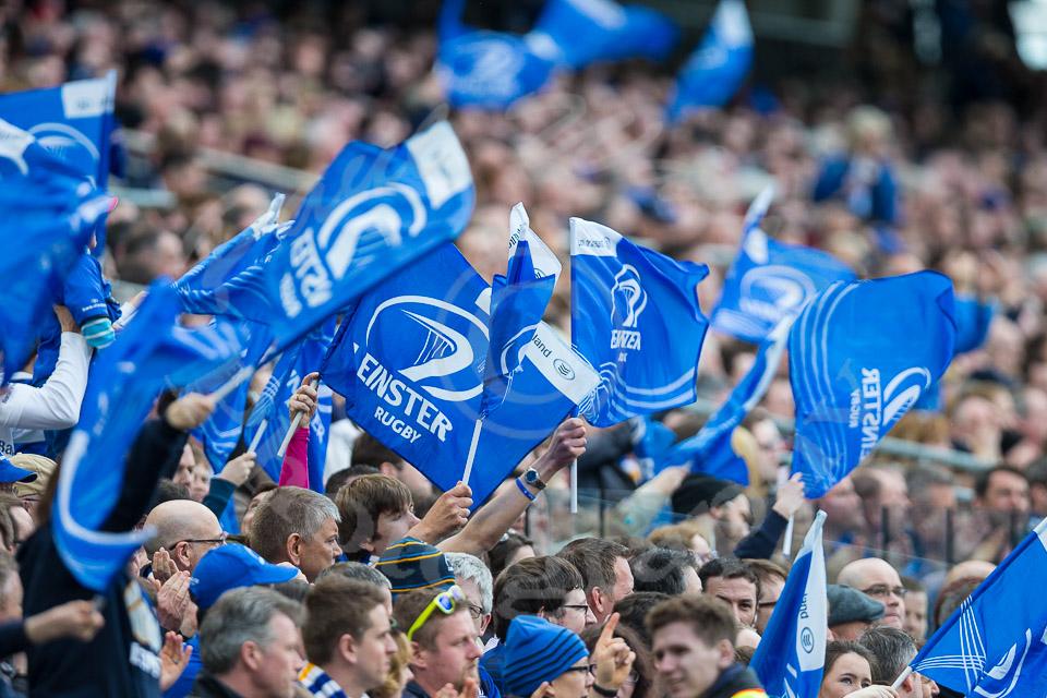 Leinster fans