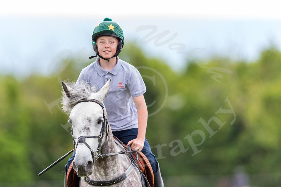 Moknsfield equestrian